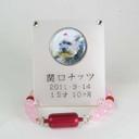 ディアペットオリジナル遺骨ブレスレット 天使のお数珠 ピンク